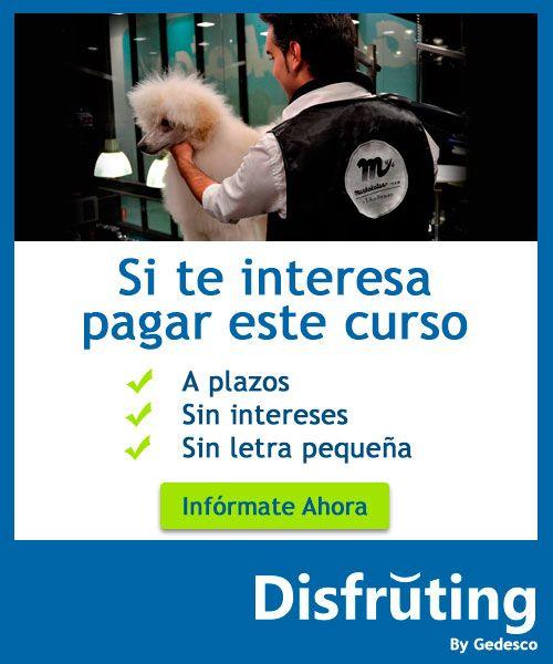Financiación curso peluquería canina #maskokotas #mascotas #formación