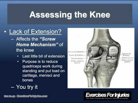 70 best WISE Physical Therapy images on Pinterest Physical - physical therapy evaluation