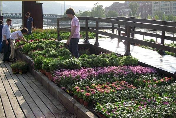 Concurso Internacional de Jardines de Bilbao, creador invitado Ailanto