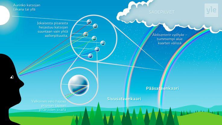 Sateenkaari syntyy, kun aurinko paistaa sadepisaroiden lävitse. Myös lasiprisma hajottaa valonsäteen eri väreiksi.