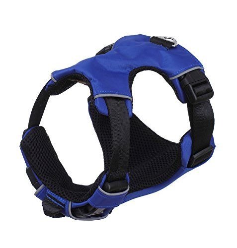 Soft Dog Harness with Adjustable Neck M Neck11021417 Chest14172283 Blue * To view further for this item, visit the image link.(This is an Amazon affiliate link)