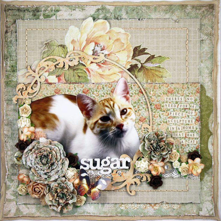 Mistra Hoolahan: Sugar