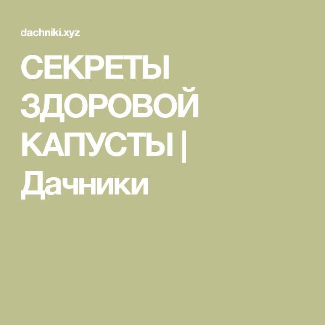 СЕКРЕТЫ ЗДОРОВОЙ КАПУСТЫ | Дачники