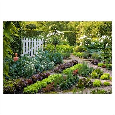 Geometrical vegetable garden