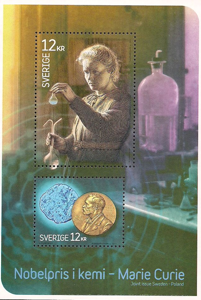 100 Best Marie Curie Images On Pinterest Marie Curie