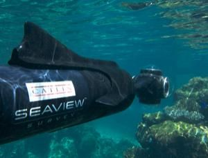Catlin Seaview Survey is a project by the University of Queensland, their sponsor, the Catlin Group, and Google to map and explore Australia's Great Barrier Reef - and soon to follow, another reef in Bermuda. Check out the video. via Paul Marks, newscientistCoral Reef