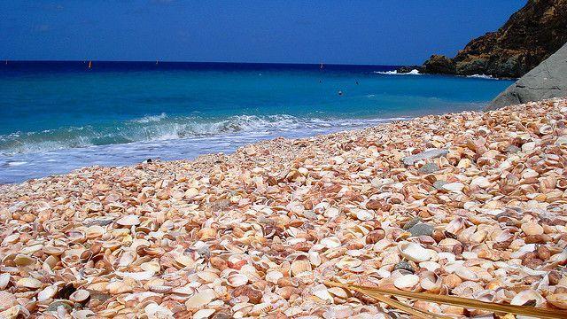 Shell Beach, St Barths