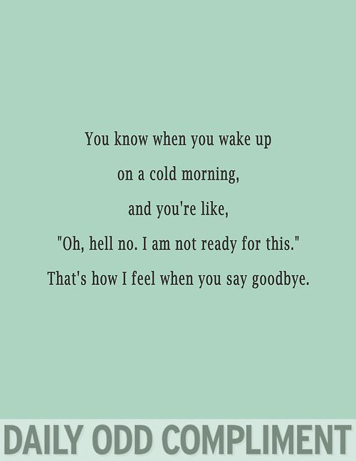 You know when you wake up - Daily Odd Compliments. - Imgur