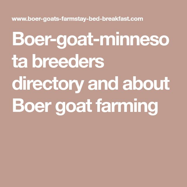 Boer-goat-minnesota breeders directory and about Boer goat farming