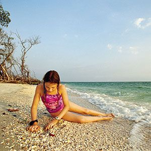 Travel Guide to Florida's West Coast Beaches