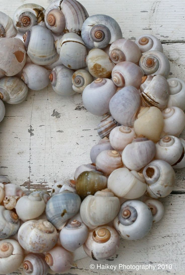 Good idea for use of the apple snail shells I have collected.