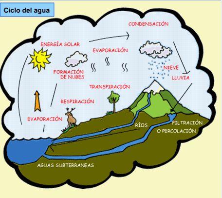 7 best el suelo images on Pinterest | Primary School Education ...