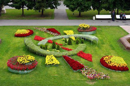 Единство форм и растений