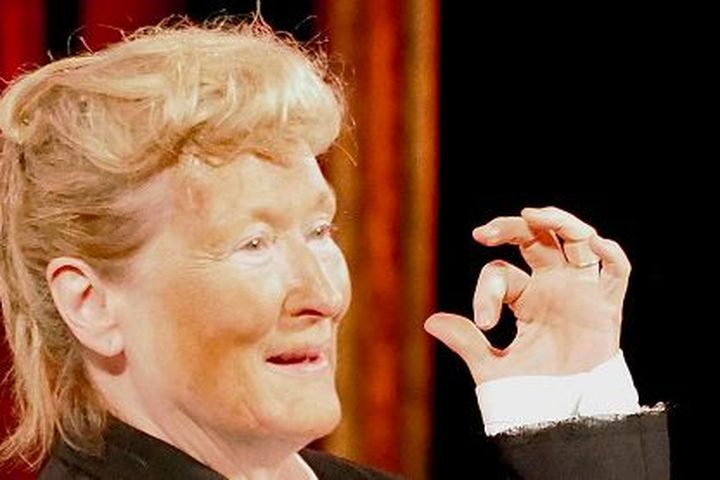 Give Meryl Streep Another Oscar for This Singing Donald Trump ...