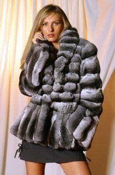Marc Kaufman Furs Presents a chinchilla fur jacket from Marc Kaufman Furs New York, from Marc Kaufman Furs New York,Fur coats in Argentina, fur coats in Chile, fur coats in Venezuela, fur coats in Australia, fur coats in Belgium,fur coats in Netherlands, fur coats in Norway,fur coats in Sweden,fur coats in Dubais,fur coats in Egypt,fur coats in Egypt,fur coats in Kuwait, fur coats in South Africa,fur coats in Tunisia,fur coats in the Falklands