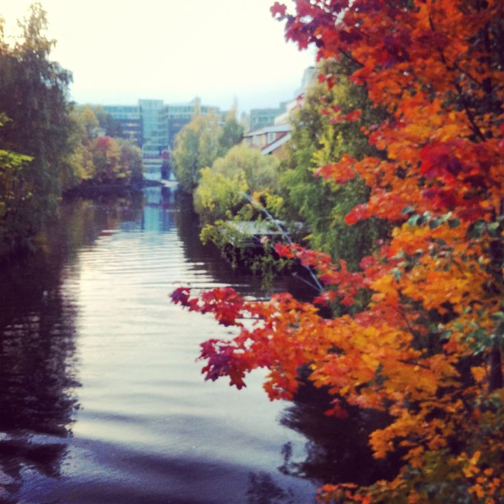 Lysakerelva, Oslo