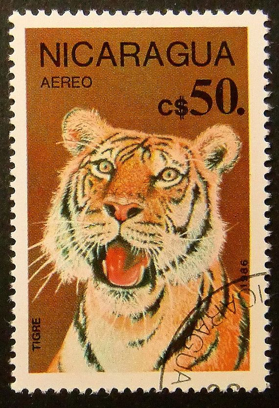 Tiger Nicaragua Handmade Framed Postage by PassionGiftStampArt