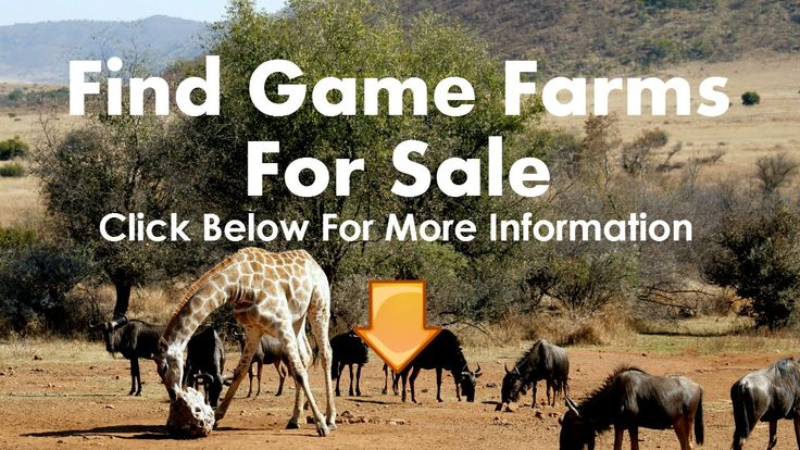 Game Farms For Sale Botswana