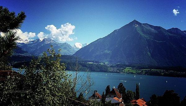 Summer Day  view from Oberhofen, Switzerland, Canton Berne, onto Mount Niesen and Lake Thun  NEW in my Gallery - available as prints, posters, cards and on a variety of products