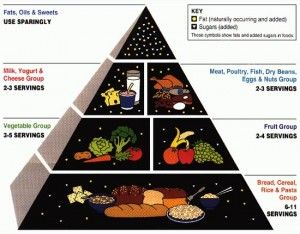 The Health and Wealth ConnectionLow Sugar, Food Group, American Food, Diabetes Food, Healthy Eating, Diabetes Diet, Foodpyramid, Food Pyramid, Weights Loss