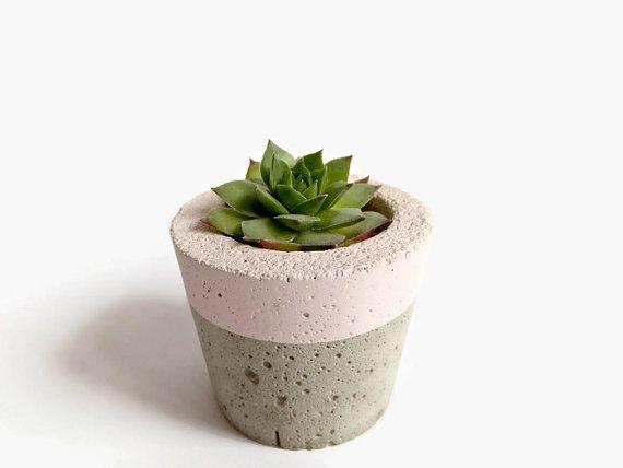 Pastel Concrete Mini Planter for Succulent Home Decor by BetonDeko
