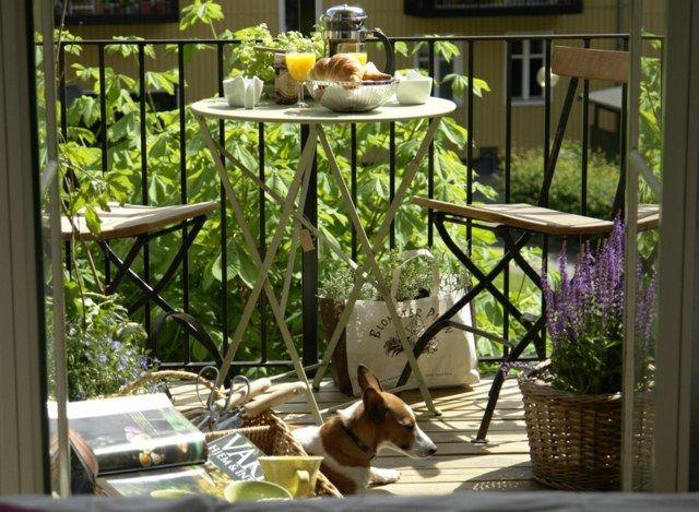 Die 25+ Besten Ideen Zu Winterharte Balkonpflanzen Auf Pinterest ... Balkonblumen Pflanzen Kalten Jahreszeit