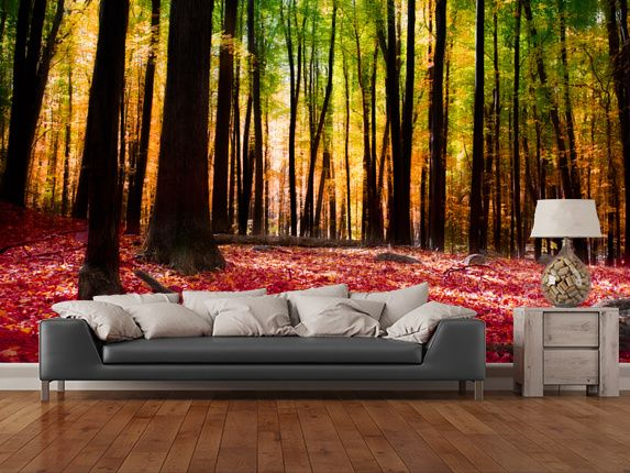 105 best forest wall murals images on pinterest murals for Autumn forest 216 wall mural