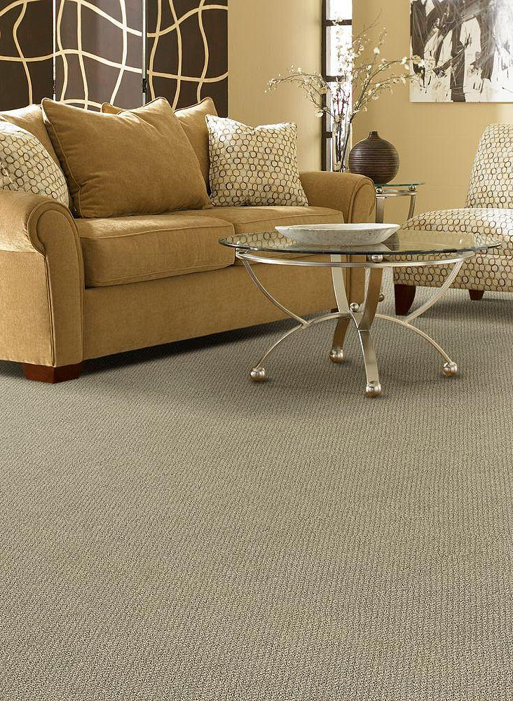 352 Best Flooring Carpet Rugs Images On Pinterest Home Depot Area Rugs And Carpet