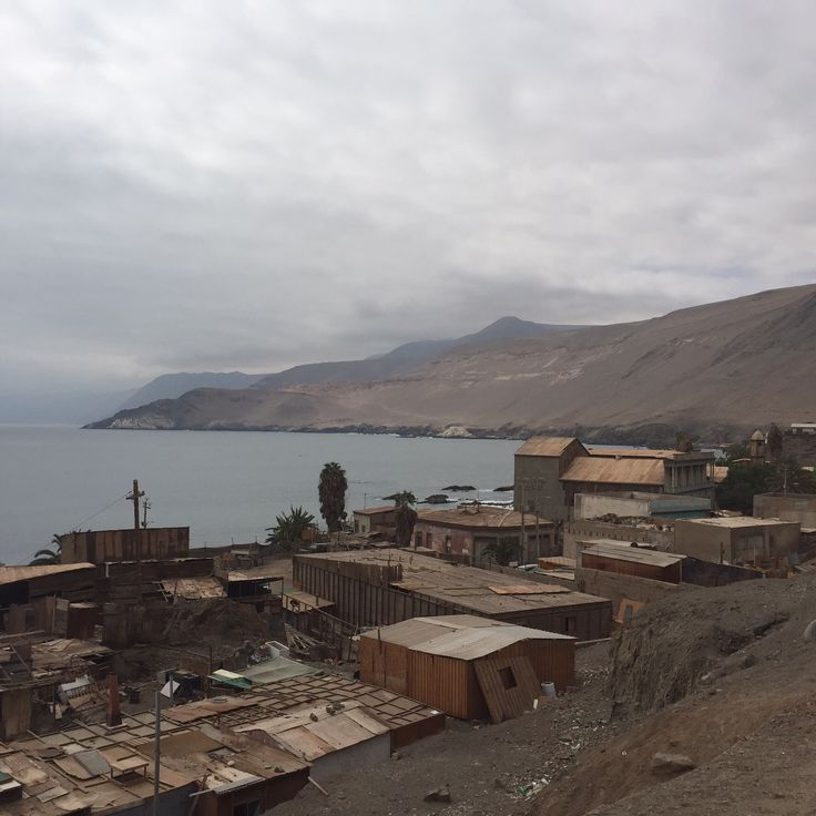 Alto Pisagua. Región de Tarapacá, Chile.