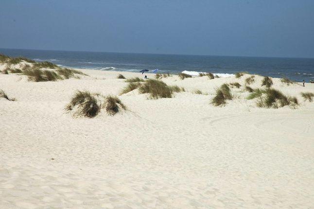 <!--:pt-->Top das melhores praias do centro de Portugal<!--:--><!--:en-->Top das melhores praias do centro de Portugal<!--:--><!--:fr-->Top das melhores praias do centro de Portugal<!--:-->  #Aveiro #centrodePortugal #Coimbra #CostadePrata #PRAIA #PraiasdePortugal