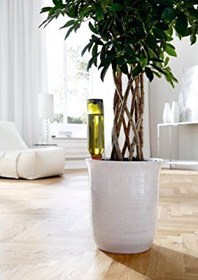 Fabulous Bio Green Bew sserung Hydro Wine Tonkegel terracotta