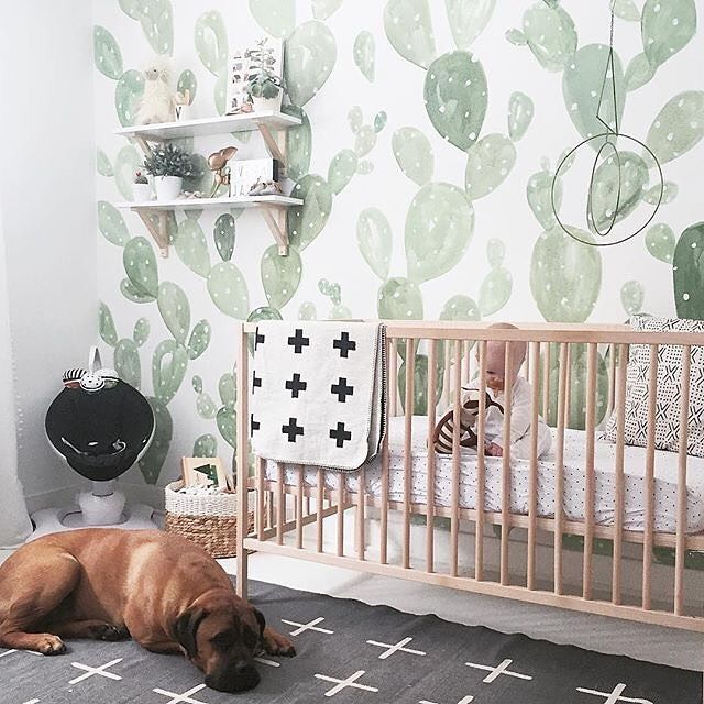 This Cactus Accent Wall Is Just Dreamy 2 How Sweet Faithful Companion To Baby Dog Southwest Inspired Nursery Ideas Pinte