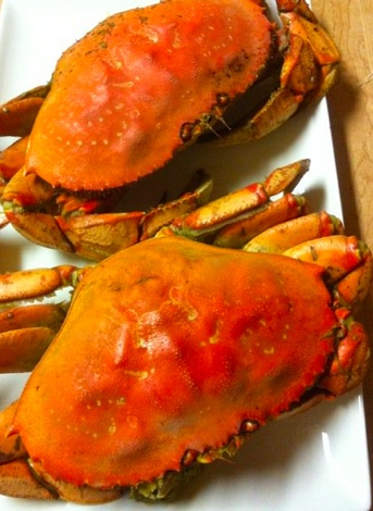 26 best images about crab fishing on pinterest oregon for Crab fishing oregon