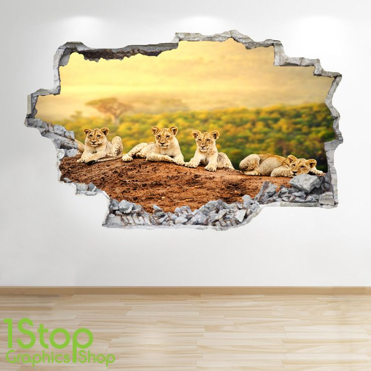 Lion Cubs Wall Sticker 3d Look - Bedroom Lounge Tiger Nature Wall Decal Z134 by 1stopdecalshop on Etsy https://www.etsy.com/uk/listing/495129524/lion-cubs-wall-sticker-3d-look-bedroom