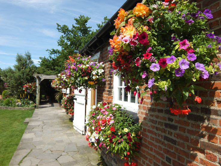 Our beautiful hanging baskets in the garden - Wedding Venue in Kent.