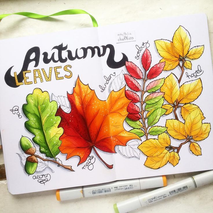 Can't stop drawing autumn  #copicfallwide #fallinspiration