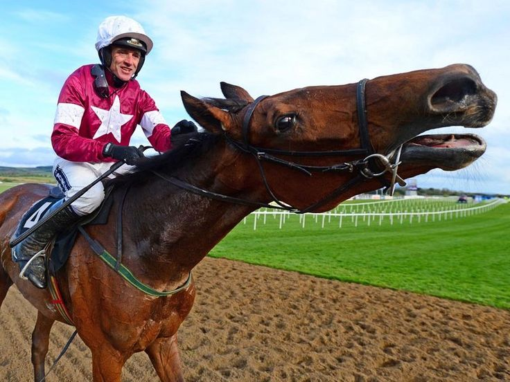 Valseur Lido and Ruby Walsh after winning at the Punchestown festival.