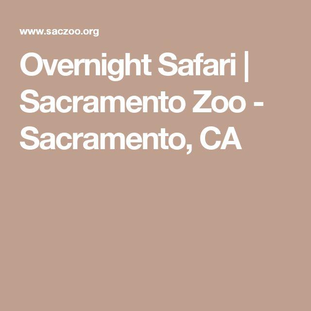 Overnight Safari | Sacramento Zoo - Sacramento, CA