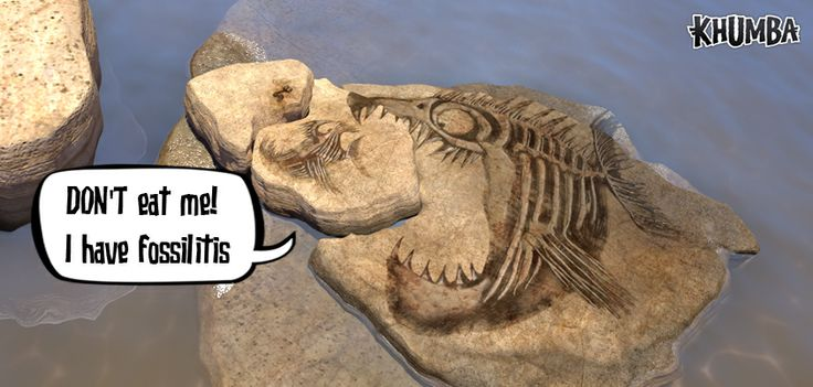 Congrats to Hettie Thysse!!!   You WON the Challenge in the last FUN CAPTION CHALLENGE !  #TheFossilChallenge #CaptionThis1  Have you heard the NEWS… Ssshhhh, KHUMBA IS OUT IN WALMART TODAY!!  Get your copy here: http://www.walmart.com/ip/33023814