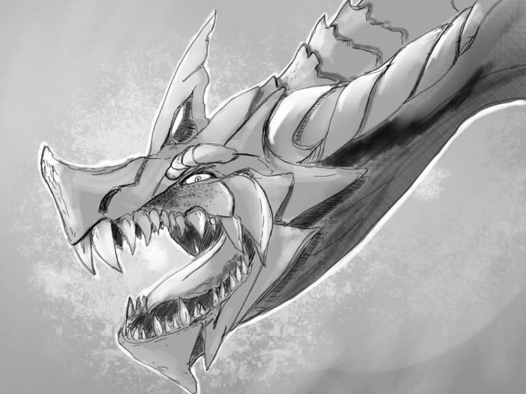 2D - Draw a dragon I said. Why you only draw the head I ask. Cause I'm lazy, I said.