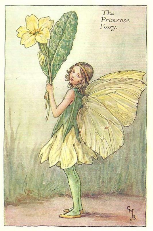 Cicely Mary Barker (1895-1973) Illustration of the Primrose Fairy for Flower Fairies of the Garden.