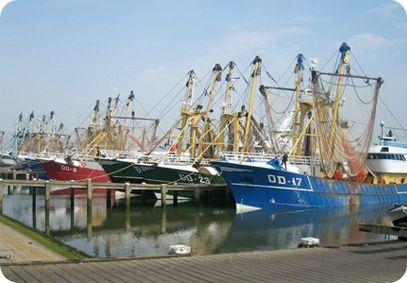 Vis & Mosselhandel Habraken | Stellendamse Vloot | Stellendam - Love to draw the ships @  Stellendam