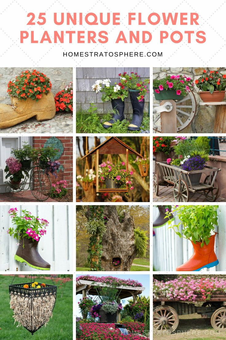 25 Unique Flower Planters And Pots Pictures Flower Planters Flower Garden Plants Unique Flowers
