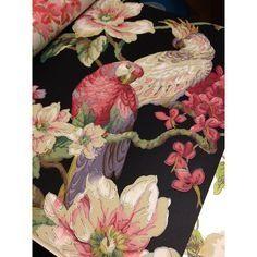 LAVENDER DREAM 322317 papegaai behang dieren vogel