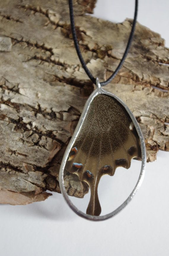 This pendant is made using a real butterfly wing. Papilla palinurus is one of the classic butterfly house species. I favourite among people for