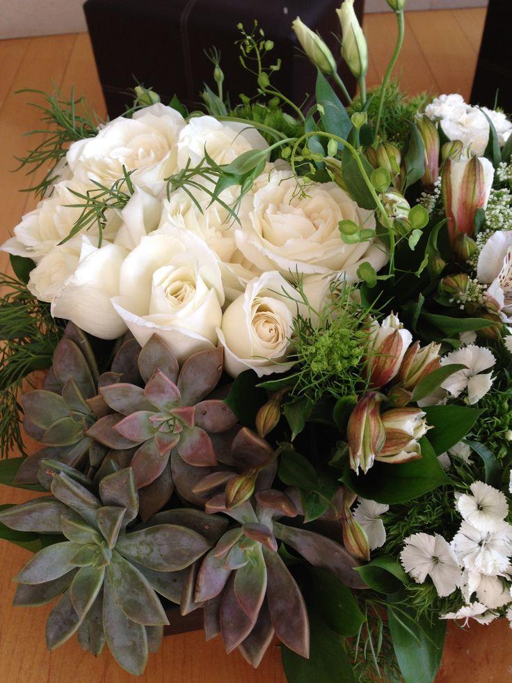 suculentas rosas astromelias