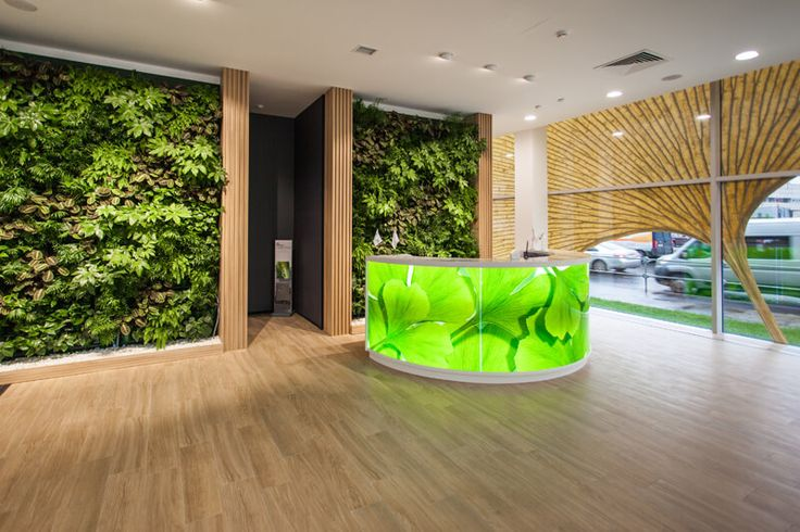 Вертикальное озеленение стен по доступным ценам | Вертикальные сады от компании «Флориста»