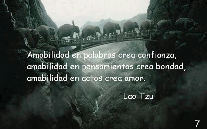 Amor —Lao Tse
