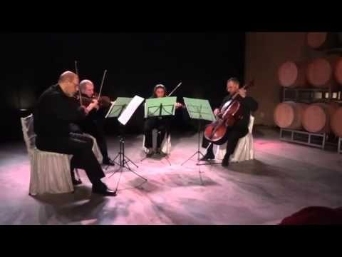 Classical music concert at Casarena Winery, Mendoza Argentina.