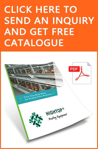 chicken cage battery cage catalogue